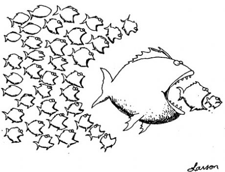 cooperative-movement